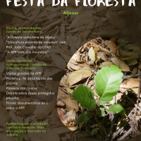 Festa da Floresta