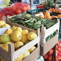 No Viv´o Mercado irá encontrar produtos vegetais ou de origem animal, frescos, secos ou transformados, preferencialmente de origem biológica, artesanato cuja matéria-prima seja proveniente das terras.